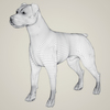08 19 41 843 realistic parson russell terrier dog 07 4