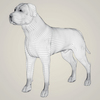08 19 43 126 realistic mastiff dog 07 4