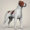08 19 43 964 realistic parson russell terrier dog 06 4