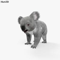 Koala HD 3D Model