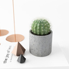 16 47 40 473 02 decor set 01 cactus 4