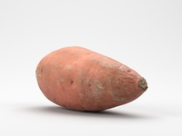 Photorealistic Sweet Potato 3D Model