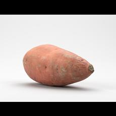 Photorealistic Sweet Potato 3D Model