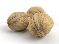 Three Different Photorealistic Walnuts 3D Model