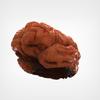 08 18 27 791 brain external 3 4