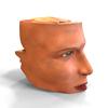 11 02 03 845 nose.5 4