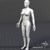 00 50 47 496 dl3d fmusculars grayscale 4
