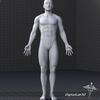 02 01 14 907 dl3d mmusculars grayscale 4