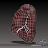 06 24 21 149 dl3d spleen wireframe 4