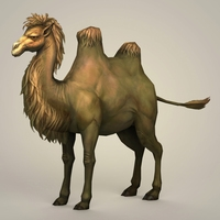 Game Ready Fantays Camel 3D Model