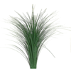 03 04 44 260 grass 512x512 basecolor 4
