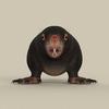 06 39 04 387 game ready mole 02 4