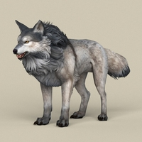 Game Ready Wolf 3D Model