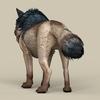 06 55 01 591 game ready wild wolf 04 4