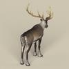 12 34 09 322 game ready reindeer 05 4