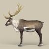 12 34 09 876 game ready reindeer 03 4