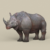Game Ready Rhinoceros 3D Model
