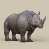 12 45 28 953 game ready rhinoceros 06 4