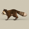 13 23 15 144 game ready raccoon 03 4