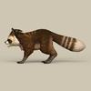 13 23 15 144 game ready raccoon 03 4