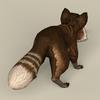 13 23 15 373 game ready raccoon 05 4
