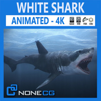 Animated Great White Shark 3D Model
