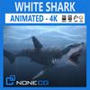15 08 12 49 shark thumb 4