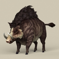 Game Ready Fantasy Boar 3D Model