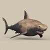 05 51 20 411 game ready shark 06 4