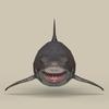 05 54 00 217 game ready white shark 02 4