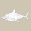 05 54 01 88 game ready white shark 07 4
