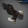 09 00 54 598 eagle bald 09 4