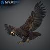 09 12 46 40 006 eagles 4