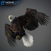 09 12 46 764 011 eagles 4