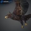 09 12 46 924 012 eagles 4