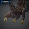 09 12 48 100 024 eagles 4