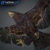09 12 48 564 028 eagles 4