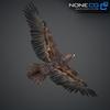 09 12 48 988 030 eagles 4