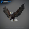 09 12 49 308 033 eagles 4