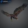 09 12 49 540 036 eagles 4
