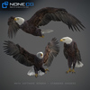 09 12 50 231 041 eagles 4