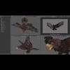 09 12 51 508 044 eagles 4