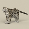 18 48 17 779 game ready snow leopard 01 4