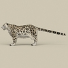 18 48 17 928 game ready snow leopard 03 4