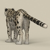 18 48 17 949 game ready snow leopard 04 4
