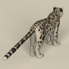 18 48 17 961 game ready snow leopard 05 4