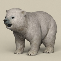 Game Ready Polar Bear Cub 3D Model