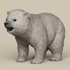19 11 34 222 game ready polar bear cub 01 4
