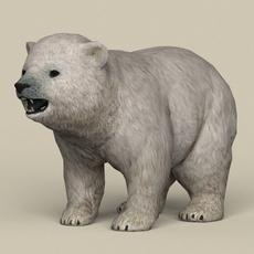 Game Ready Polar Bear Cub 3D Model