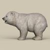 19 11 34 357 game ready polar bear cub 03 4